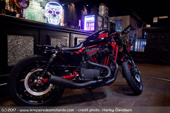 Harley Queen - HD District 78
