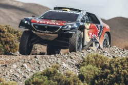 Stéphane Peterhansel sur Peugeot (Photo Red Bull)